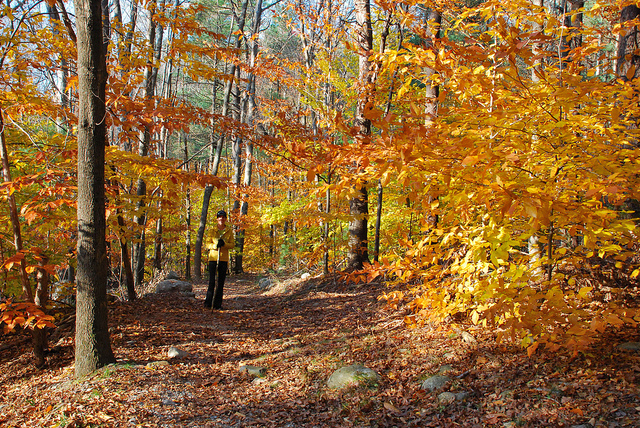 Wompatuck hiking trail