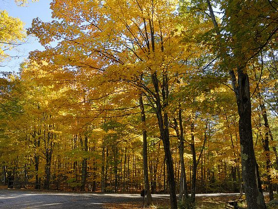 Boston Area Campgrounds: Bradbury Mountain State Park