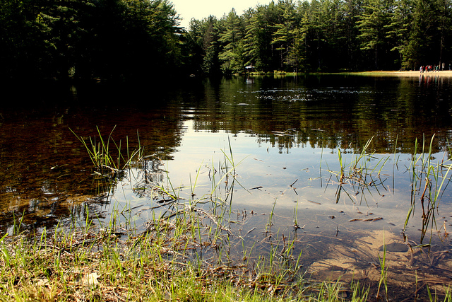otter river campground