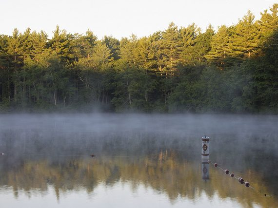 Boston Area Campgrounds: Hopeville Pond State Park