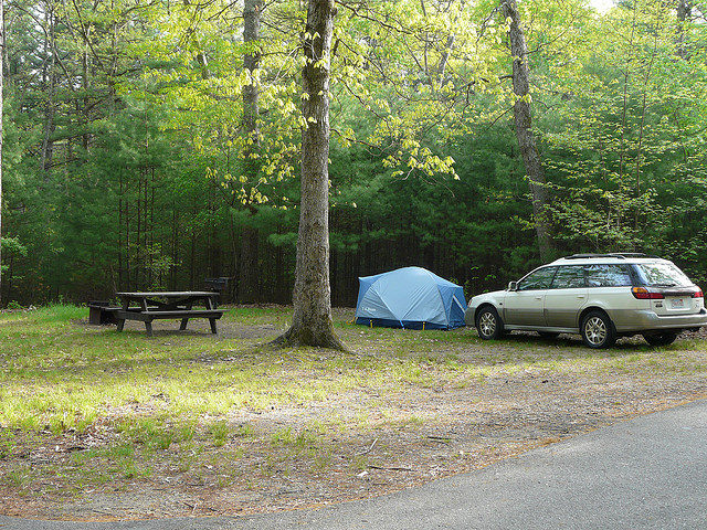 harold parker state forest campground